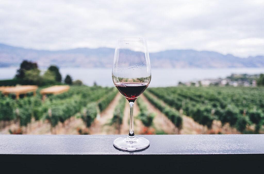 vörösbor káros-e a fogakra